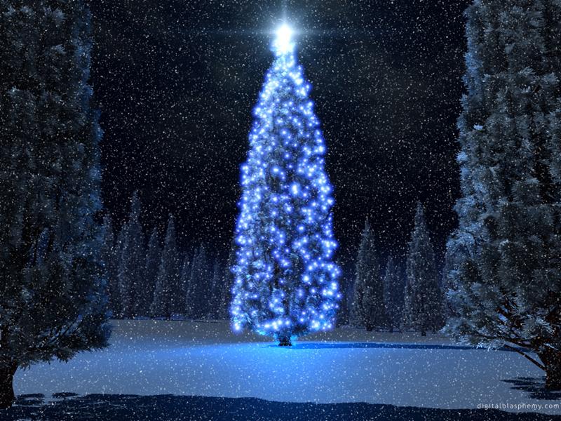 Christmas Tree Snow Een Leuke Teambuilding Activiteit Maak Een
